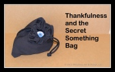 secret something bag